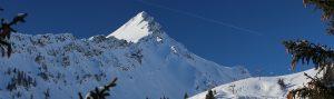 Organisation leicht gemacht. Bei den Bergbahnen Brandnertal helfen wir dir mit der Planung des Gruppenausflugs.